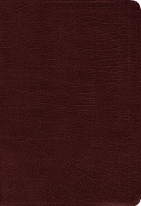 Amplified Holy Bible (Revised) Burgundy Bonded Leather