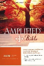 The Amplified Bible Large Print Bonded Burgundy Leather