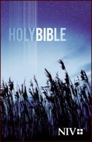 NIV Outreach Holy Bible-Blue Wheat Softcover