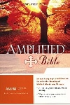 Amplified Bible Large Print (Revised) Bonded Burgundy Leather