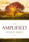 Amplified Study Bible Hardcover